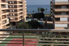 Apartment in Torrevieja - Ocas
