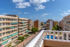 Apartment in Torrevieja - Buenavista LT