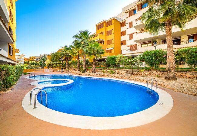 Apartment in Torrevieja - Alferini