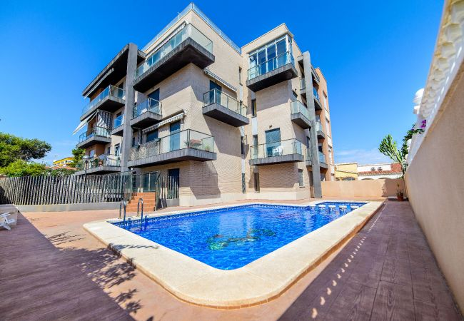 Apartment in Torrevieja - Dama