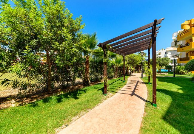 Apartment in Torrevieja - Michel