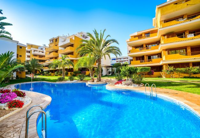 Apartment in Torrevieja - Flamenco