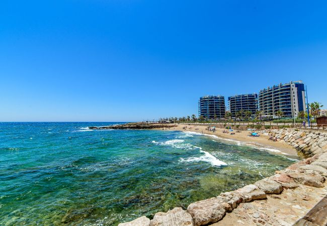 Apartment in Torrevieja - California