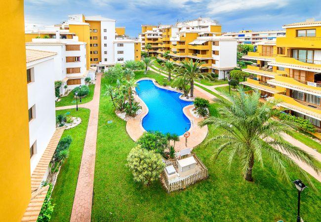 Apartment in Torrevieja - Paula