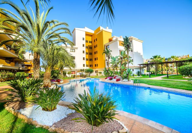 Apartment in Torrevieja - Paula