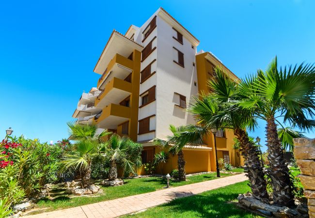 Apartment in Torrevieja - Amani