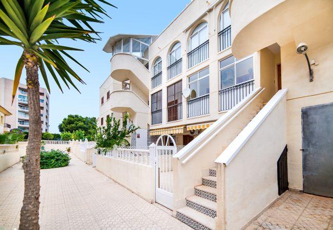Apartment in La Zenia - Gilda