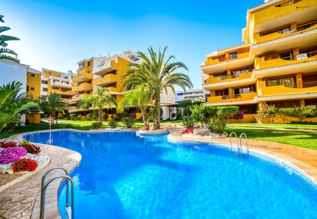 Apartment in Torrevieja - Mozart