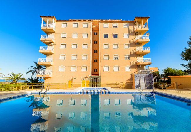 Apartment in Torrevieja - Altamar