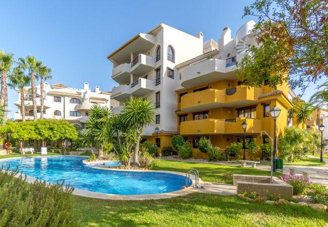 Apartment in Torrevieja - Luzmarina