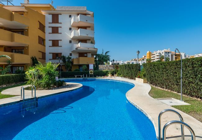 Apartment in Torrevieja - Blumen