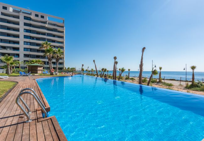 Apartment in Torrevieja - Murano
